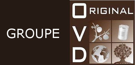 logo OriginalVD pied-de-page