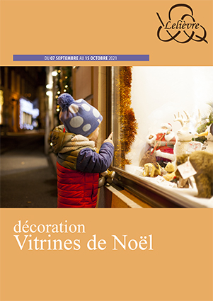 Catalogue Vitrophanie Noël 2021